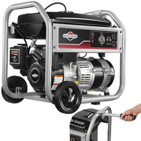 Picture for category Briggs & Stratton
