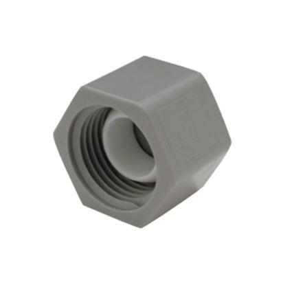 "Picture of QEST Qicktite (R) 1/2"" FPT Gray Acetal Test Cap  10-3142"