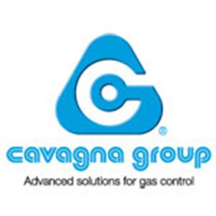 Picture for manufacturer Cavagna